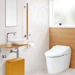 トイレのカビ対策に効く洗剤!ピンク汚れの正体は?