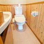 トイレのカビが臭い!防止方法や便利な掃除グッズ!